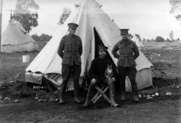 10 удивительных фактов о Первой мировой войне